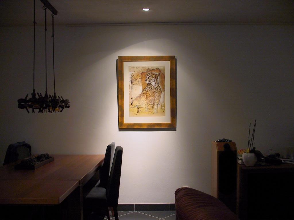 Inbouwspots Keuken Gamma : Vervanging van 5 x 35W halogeen door LED spots in mijn huiskamer