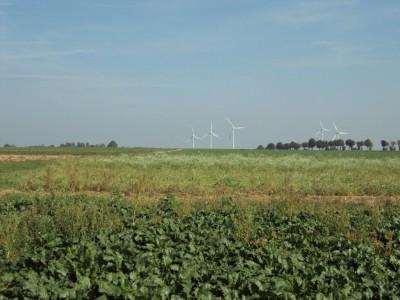 Windmolens markeren de grens tussen Limburg en Duitsland