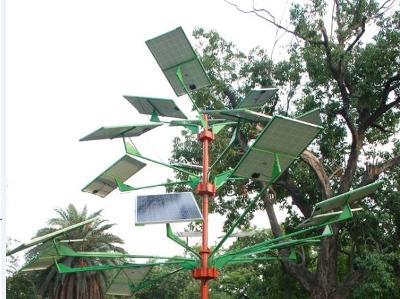 Met 14 panelen aan dit boompje, van 270 Wp is dit 3.780 Wattpiek, wat voldoende stroom kan genereren voor een gemiddeld Nederlands huishouden.